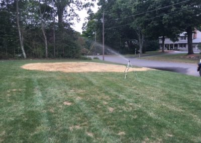 Total Lawn & Tree, LLC - Our Portfolio